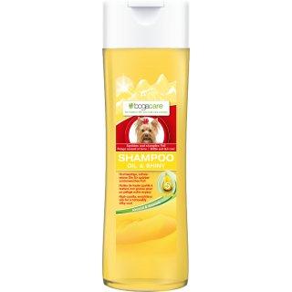 bogacare Shampoo Oil & Shiny Hund 200 ml